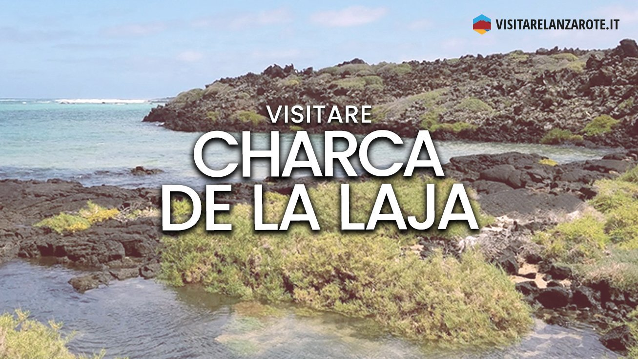 Charca de La Laja, Haría | Spiaggia dell'isola di Lanzarote