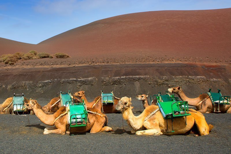 Parco Nazionale Timanfaya, la terra dei vulcani