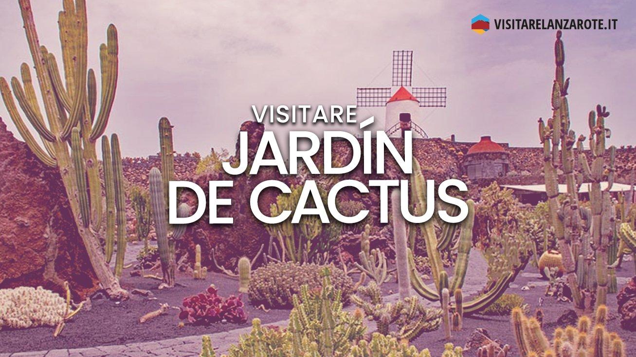 Jardín de Cactus, il paradiso dei cactus | Visitare Lanzarote