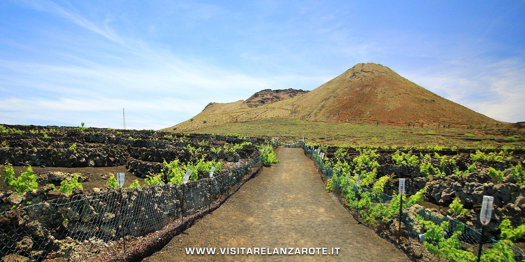 Montaña Corona Lanzarote