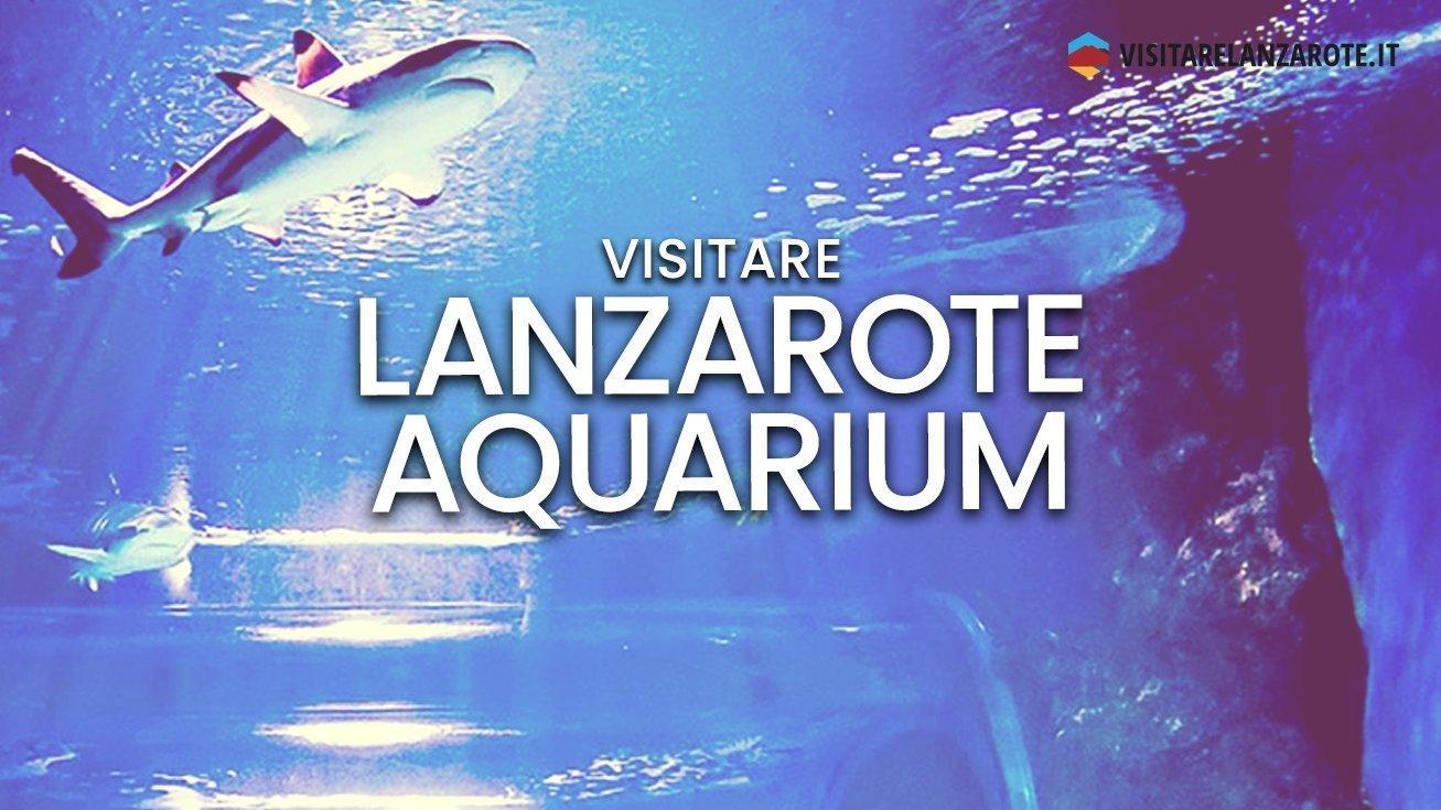 Lanzarote Aquarium, l'acquario più grande delle Canarie | Visitare Lanzarote