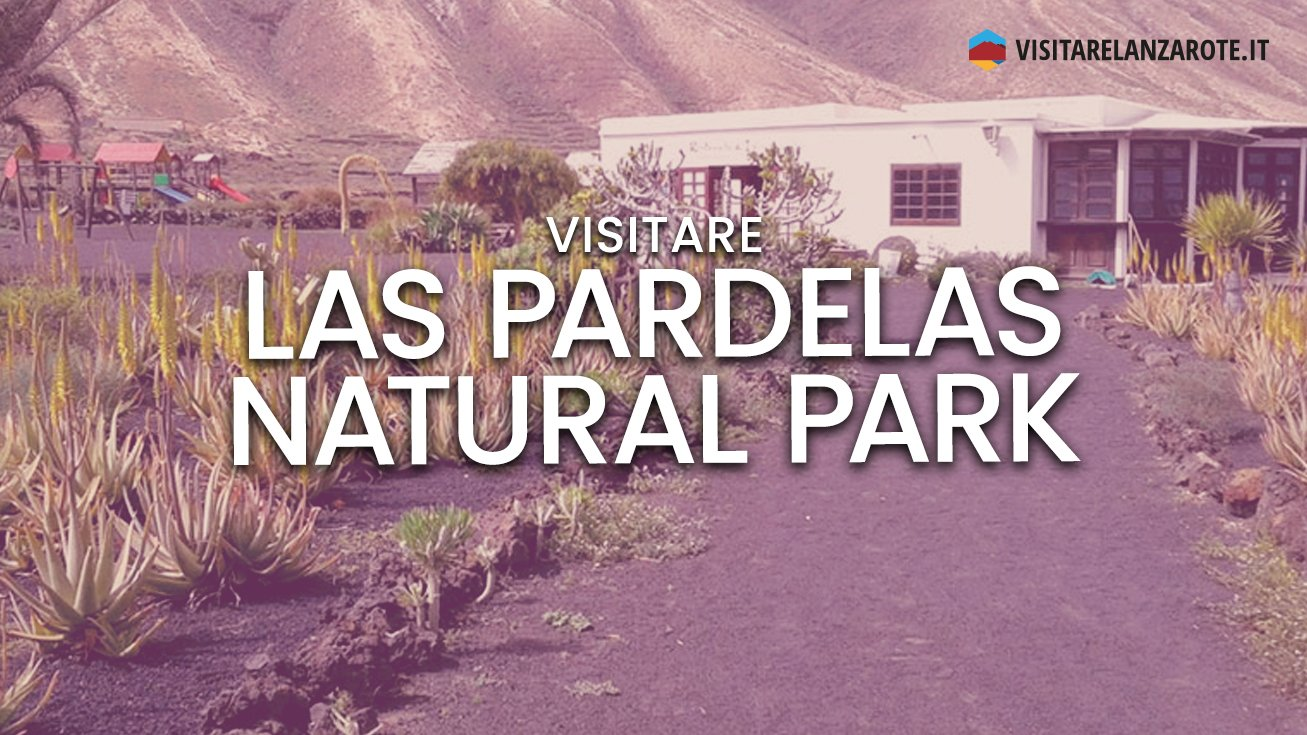 Las Pardelas Natural Park, una fattoria didattica   Visitare Lanzarote