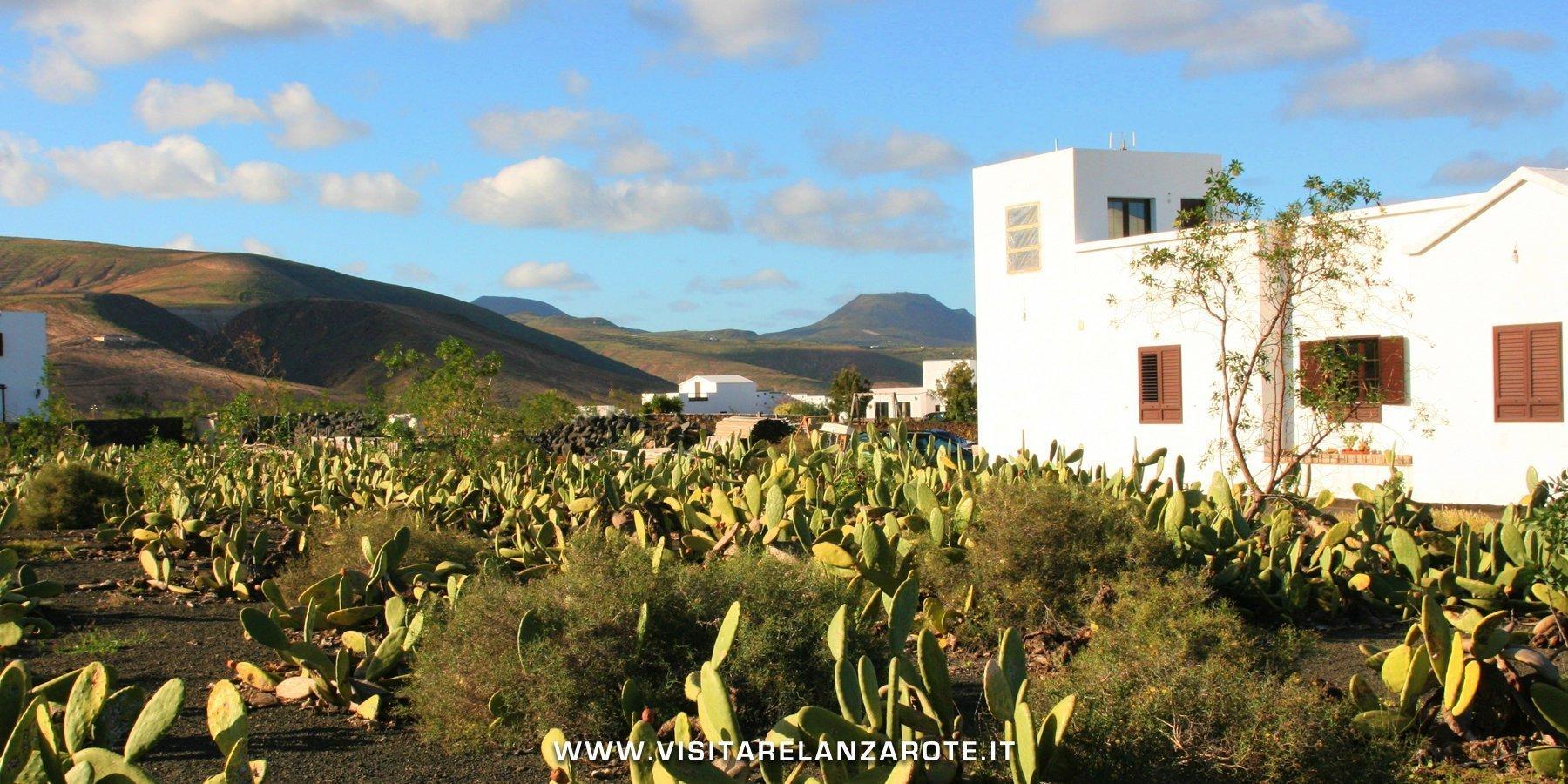 Mala Lanzarote