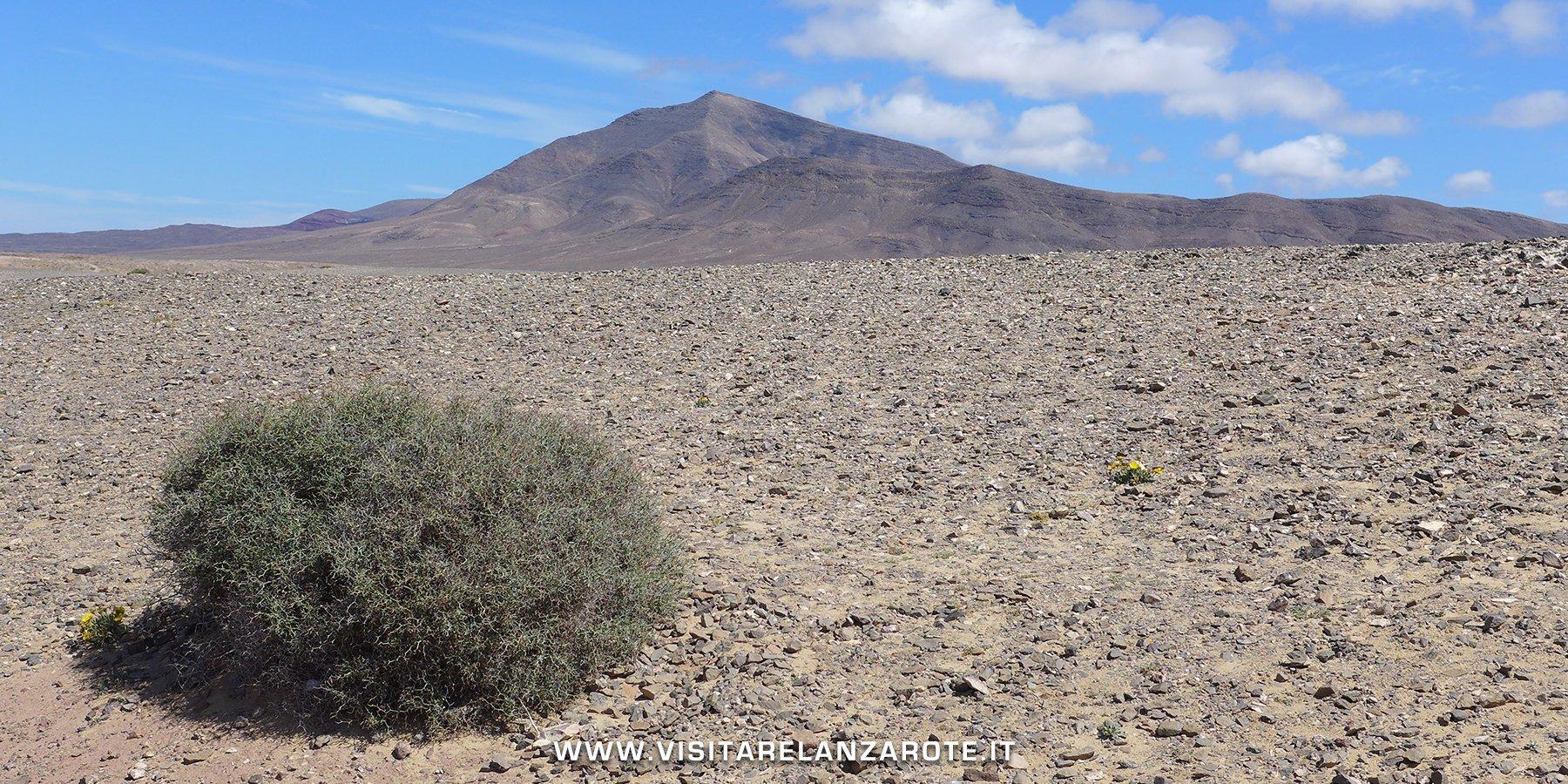 El Rubicón Lanzarote