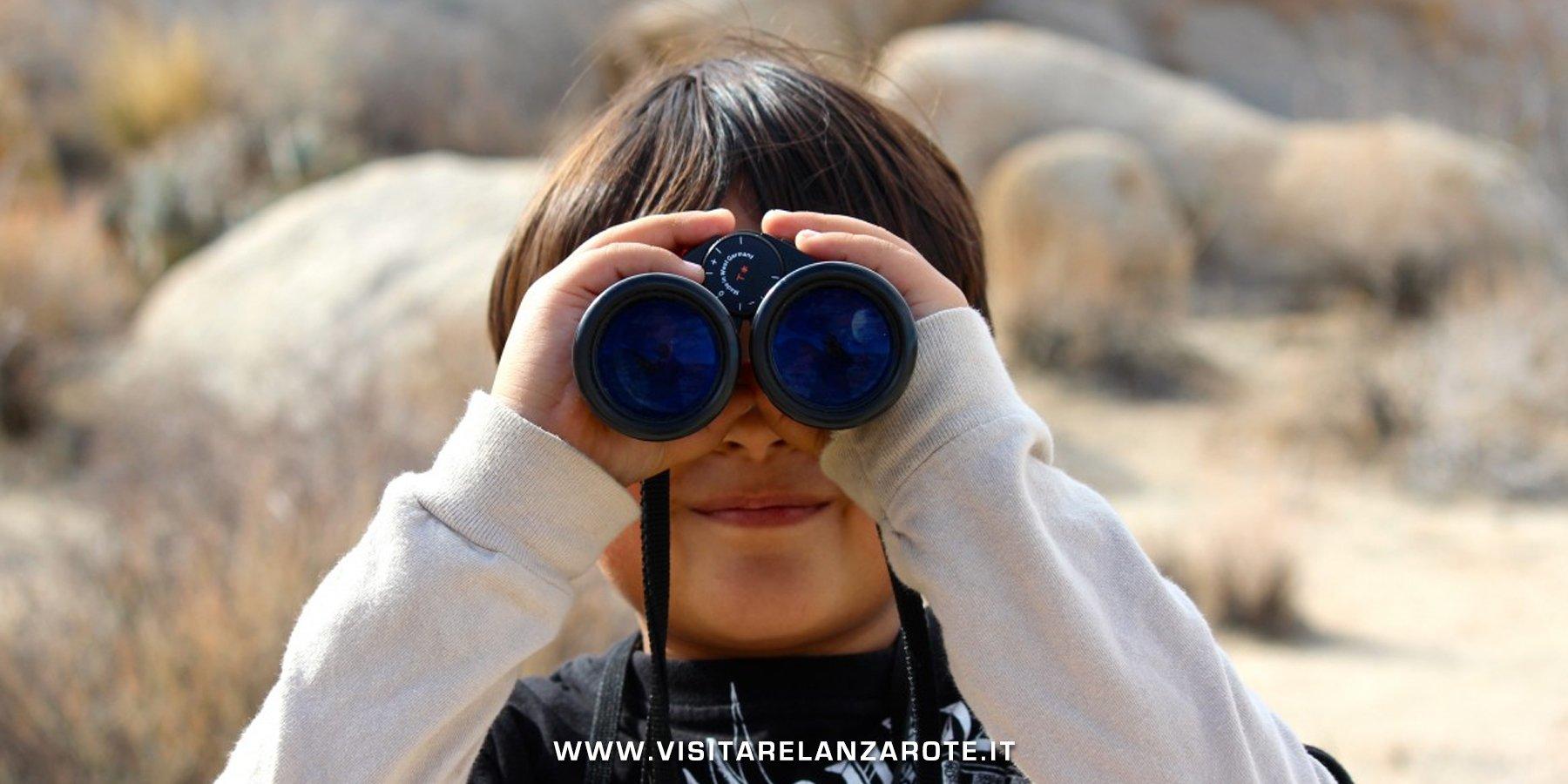 birdwatching a lanzarote